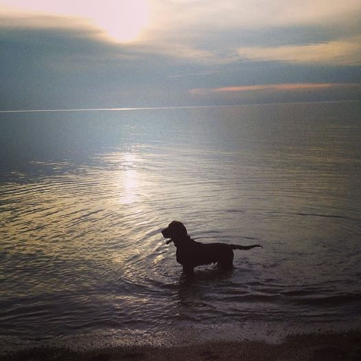 max in lake michigan